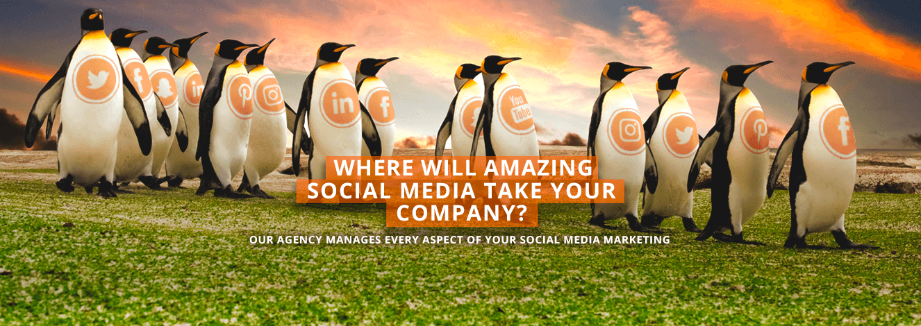 Where will amazing Social Media take your company?